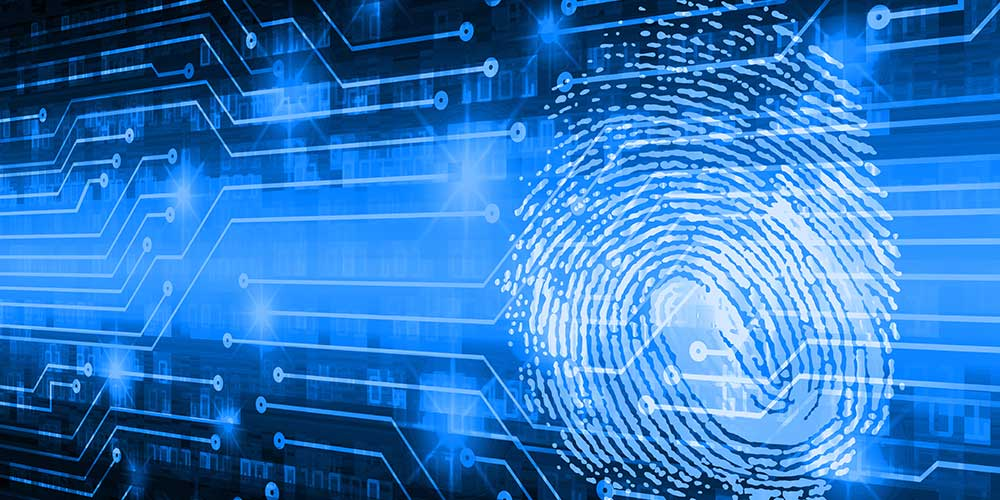 Multimodal Biometric Identification Systems Trends
